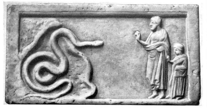Symbolism Of The Snake Serpent Symbolism Real Dream Interpretation