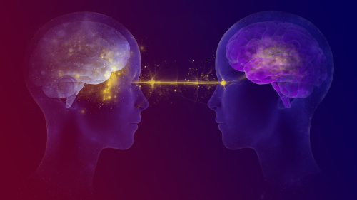 Transference Psychology in Jungian Analysis